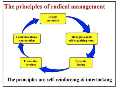 Busting Bureaucracy With Radical Management Management Innovation