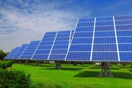 green4lifeenergy's picture